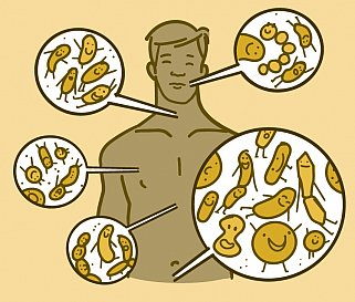 Illustration showing where microbes live on the body of a man