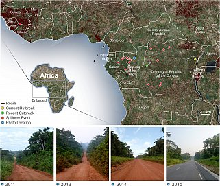 Map illustrating areas of primary human infections of Zaire ebolavirus
