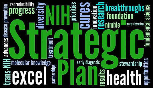 NIH Strategic Plan word cloud.