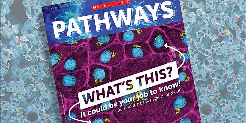 Image of the cover of Pathways Magazine