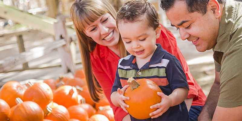 Hispanic couple and young son at a pumpkin patch.