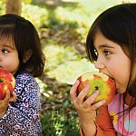 Two young girls eating apples outside.