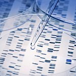 DNA with pipette and Petri dish - stock photo
