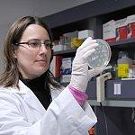 Researcher holding a petri dish.