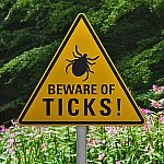 """A sign that says """"Beware of Ticks!"""""""