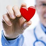 A doctor holding a red plastic heart.