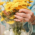 Hands with arthritis arranging flowers in a glass vase.
