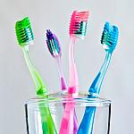 Toothbrushes in a holder.