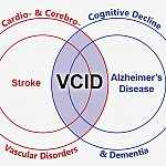 illustration connecting vascular disorders and dementia