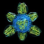 Prototype for a Universal Flu Vaccine