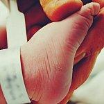 Premature infant's foot.