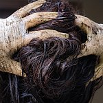 Image of a woman dyeing her hair.