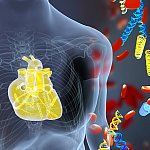 Illustration of a heart and DNA fragments