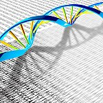 A DNA double helix rests on a print-out illustration of the DNA letters A, T, C and G.