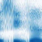Speech spectrograms