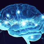 Illustration of human brain with electrical activity