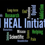 HEAL Initiative wordcloud