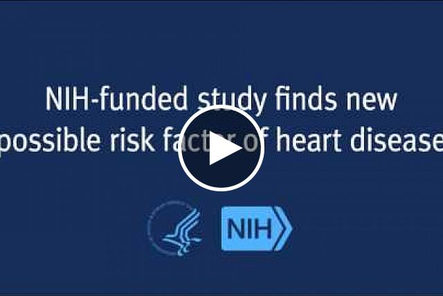 Findings suggest abnormal heart rate turbulence might be significant risk factor in otherwise healthy adults.