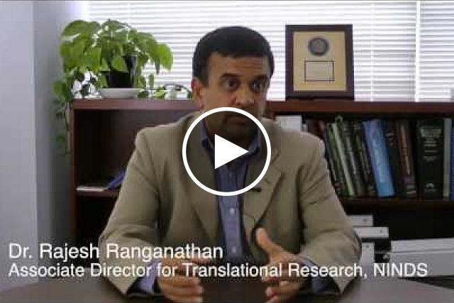 Watch Dr. Rajesh Ranganathan, Associate Director for Translational Research at NINDS, explain the NIH Blueprint and how the Blueprint Neurotherapeutics Network works.
