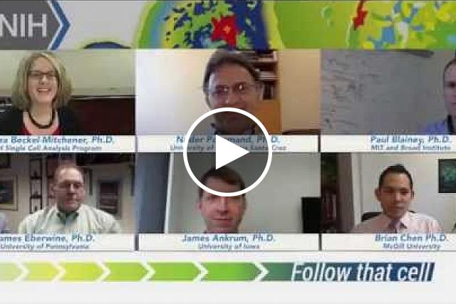 "Prize winners in the first phase of the NIH's ""Follow That Cell"" Challenge discuss their proposals in this web chat, hosted by Andrea Beckel-Mitchener, Ph.D., program coordinator for the NIH Single Cell Analysis Program. ""Follow that Cell"" challenged solvers to propose ways to analyze the dynamic state of a single cell and examine its function over time. Breakthroughs may ultimately allow researchers and doctors to identify infected cells or cells that are resistant to certain drugs or cells that may become cancerous. Awarding prizes may spur creativity and tap into different talent pools than more traditional grant and contract funding mechanisms."