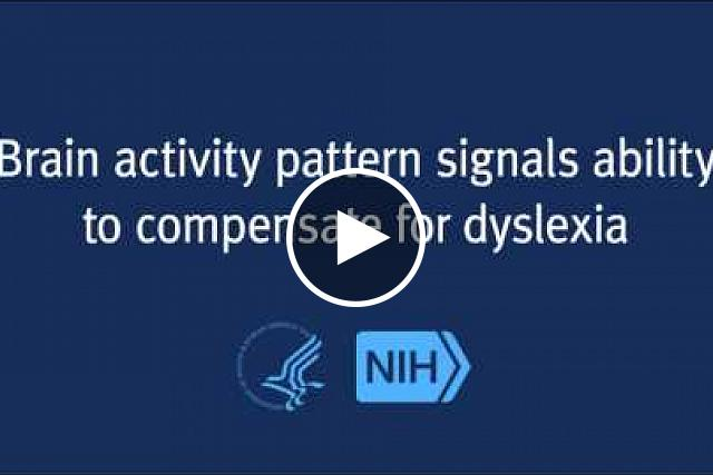 Brain scans of dyslexic adolescents who were later able to compensate for their dyslexia showed a distinct pattern of brain activity when compared to scans of adolescents who were unable to compensate, reported researchers funded in part by the Eunice Kennedy Shriver National Institute of Child Health and Human Development.