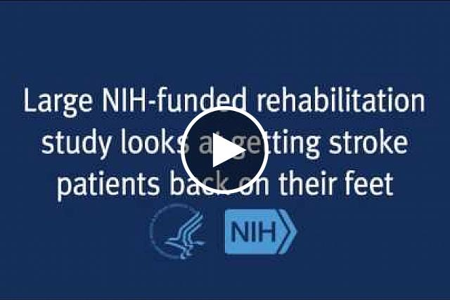New research compares physical therapy options for stroke survivors. Stroke patients who had intense physical therapy at home improved their ability to walk just as much as those in a training program with a treadmill device. The study also shows that stroke patients can continue to improve up to one year after stroke, offering new hope to patients and their families.