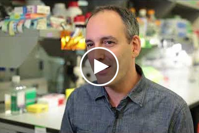 """Dr. Alex Chesler, a program investigator in NCCIH's Division of Intramural research, speaks about his new research paper in the journal Neuron, """"Specialized mechanosensory nociceptors mediating rapid responses to hair-pull."""""""
